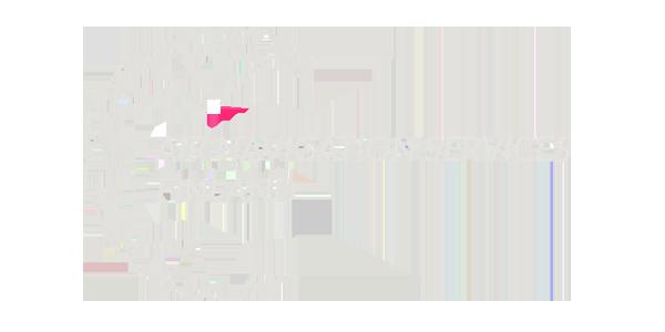 ans_logo_600